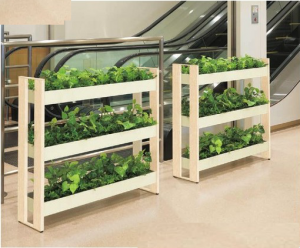 greenstand03